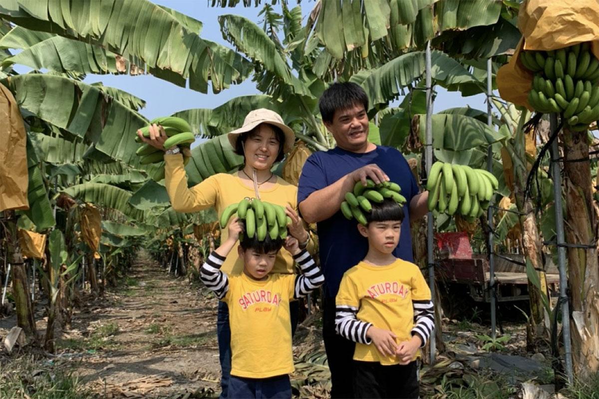 台湾フルーツ
